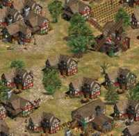 Age of Empires 2 : Age of Kings